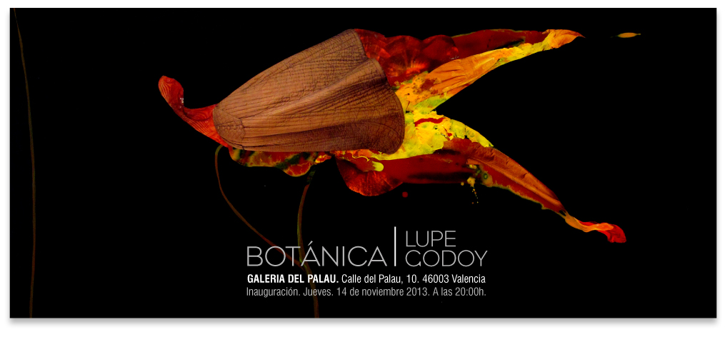 Botanica expo